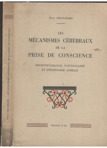 Les Mécanismes Cérébraux de La Prise de Conscience