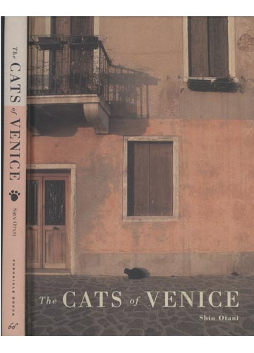 The Cats of Venice