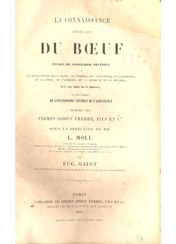 Connaissance Générale Du Boeuf
