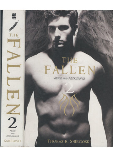 Livro - The Fallen - Volume 2 - Aerie and Reckoning - Sebo