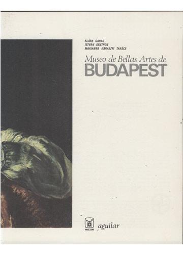 Museo de Bellas Artes de Budapest + 100 Slides