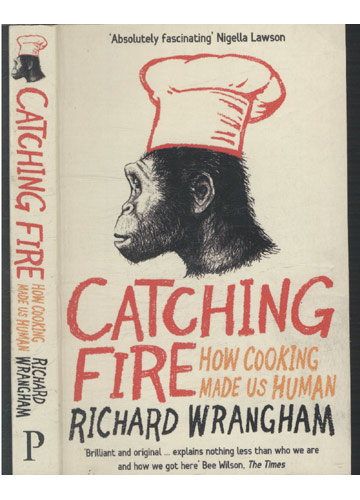 Catching Fire - How Cooling Made us Human