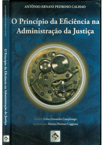 O Princípio da Eficiência na Administração da Justiça