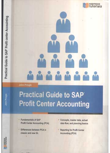 Practical Guide to SAP