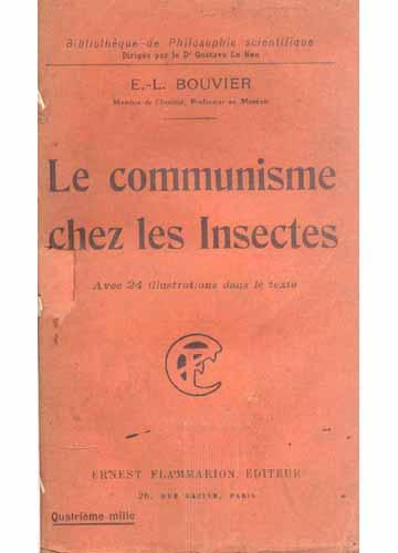 Le Communisme Chez Les Insectes
