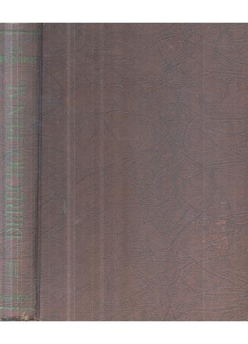 Derecho Penal - Volume 2